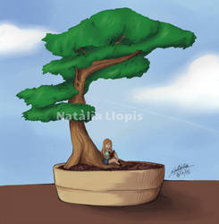 Reading Under The Bonsai by Zefiracks