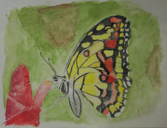 Butterfly by AgentBurn