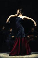 Encantado por Flamenco by ryoung