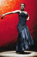 La Nobleza del Flamenco by ryoung