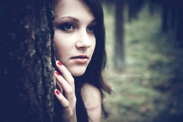 Forest beauty by BeataMazurek