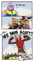 WE HAVE SCOTT by Hallpen