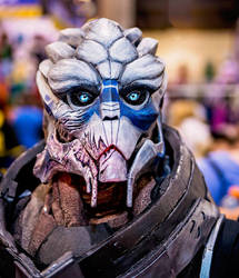 Garrus up close by UnleashedHearts