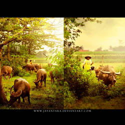 1 by Jayantara