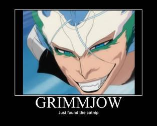 Bleach Grimmjow Motivational by daddius