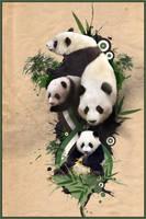 Panda Life by MagicalViper