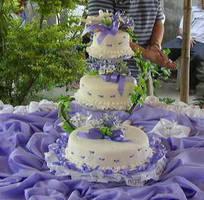 cake by bimaquino