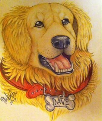 Dave my golden retriever by Suenta-DeathGod