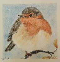 Robin by Irbisty