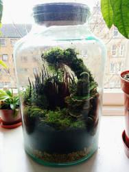 Tiny Forest by Irbisty