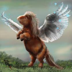 Glorious Shetland Pony by Irbisty