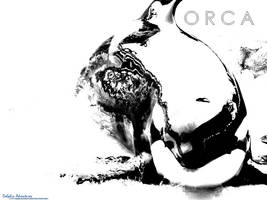 TacoTaku Orca Wallpaper by annlo13