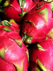 Dragon Fruit by j5rson
