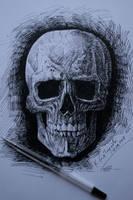 Skull by gielczynski