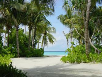 Maldives beach by tgee
