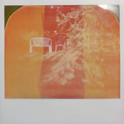 Polaroid test 2 by BrokenShell121