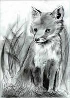 Fox by Yamatoking