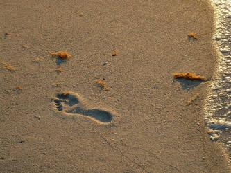 Lost Footprint by akirea