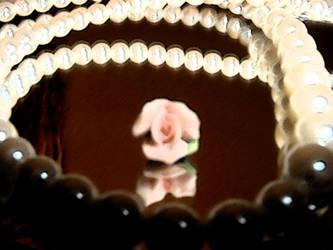 Pearl Rose by akirea