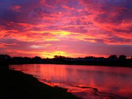 sunset by magicmuppet