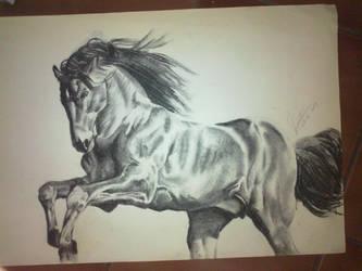 Carbonilla Horse by montonico