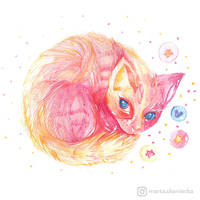 A Kitten by mia-sko