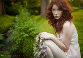 midsummer dreams by EL3-Imagery