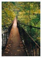 Bridge of Dreams by evyto