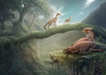 secret paths by Vasylina