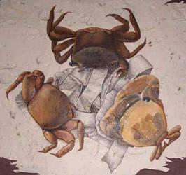 Crustacean Trio Detail by GraceWillard