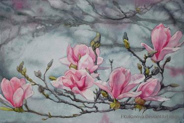 Magnolia1 by EKukanova
