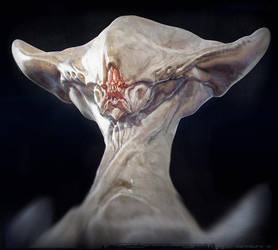 CDW Warmup Albino 1 by BenMauro