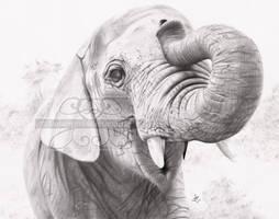 Happy Elephant by lunarsparks
