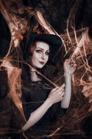 I Shall Wear Midnight by LadyAetele