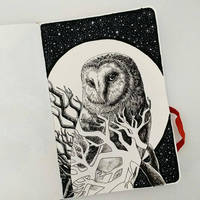 #3 Barn Owl by ComposedLines