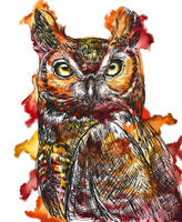 #86 Great Thoughtful Horned Owl by ComposedLines