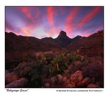 'Baboquivari Sunset' by gwrhino