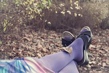 Leaf by NoctemPhotography