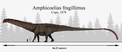 E.D Cope's Lost Giant: Amphicoelias fragillimus by RhysDylan01