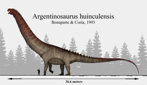 The South American Heavyweight: Argentinosaurus by Paleonerd01