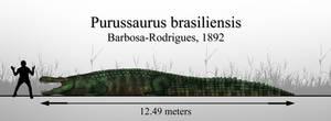 The Giant Caiman: Purussaurus brasiliensis by Paleonerd01