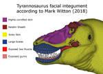 Tyrannosaurus Rex Facial Integument by RhysDylan01