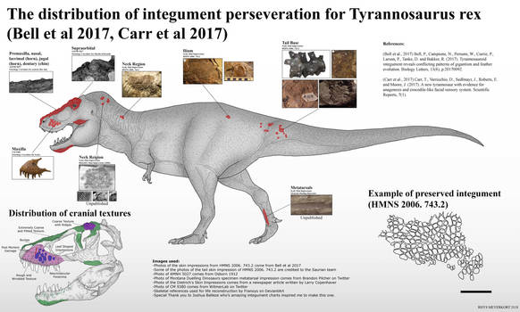 The Integument of T.rex by RhysDylan01