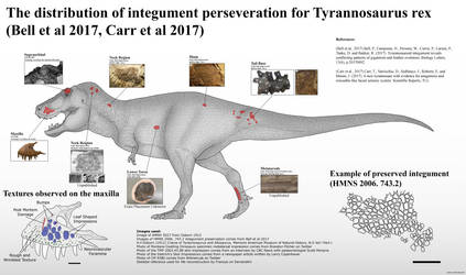 The Integument of T rex by RhysDylan01