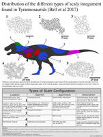 The Scale Types of Tyrannosaurids by Paleonerd01