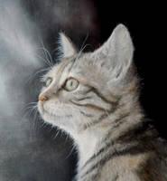Little cat by jbillustration