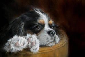 So dog-tired by jbillustration