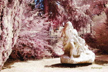 IR Queens Of Stone XII by IRphotogirl