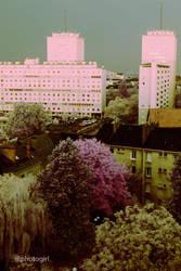 IR Urban Beauties Of Decay IX by IRphotogirl