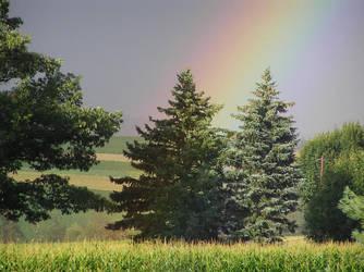 Rainbow by kashmier